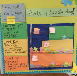 Another Example of a Data Wall with Levels of Progression
