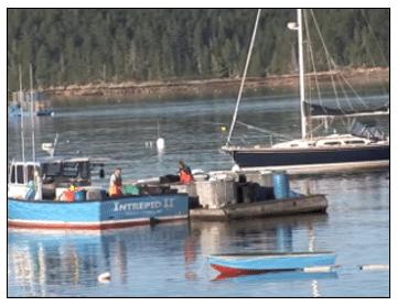 Student Activity in Harbor of Deer Isle-Stonington District